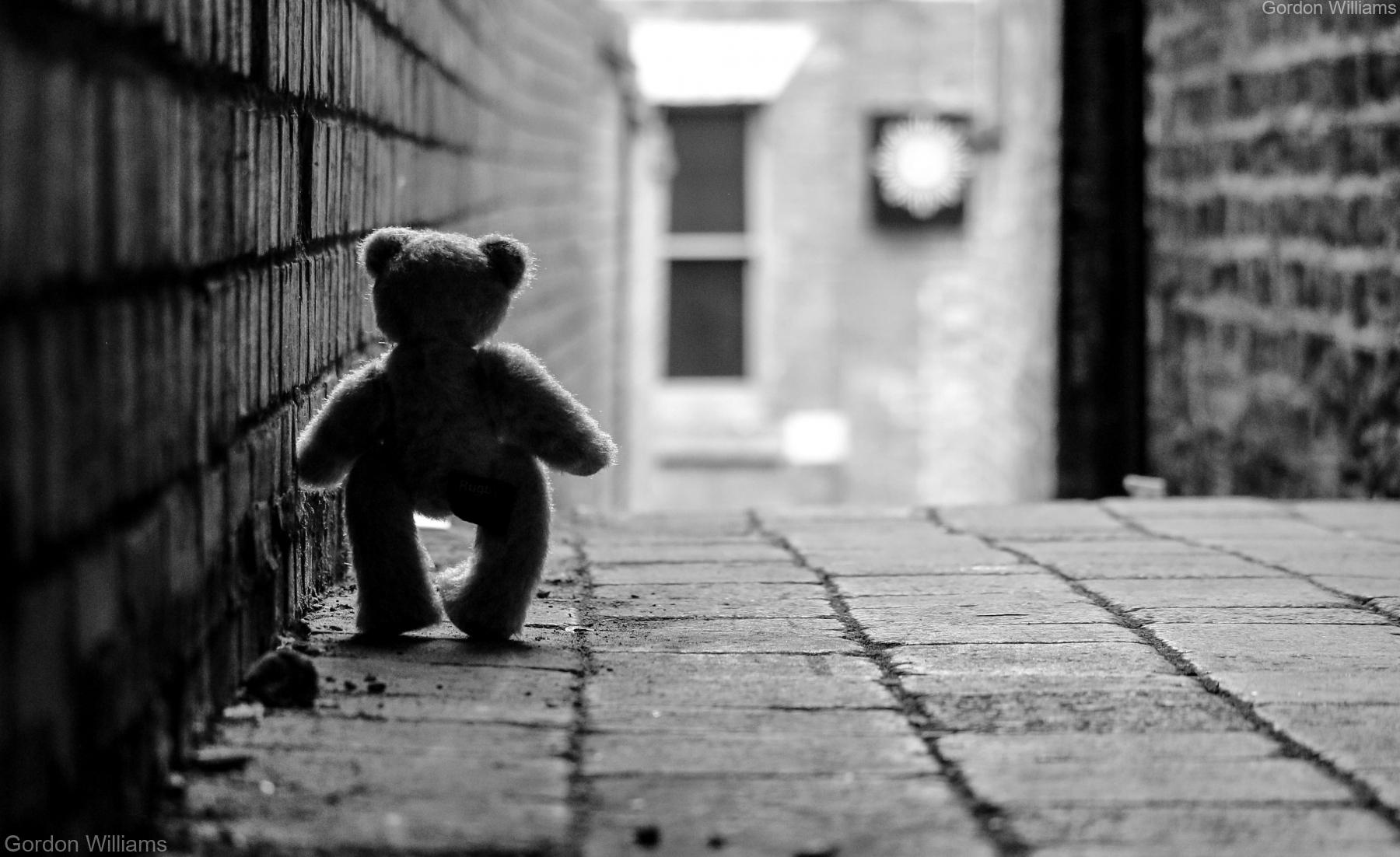 Back alley teddy